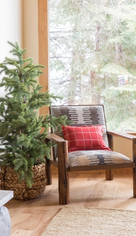 mountain chair by pine tree